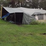 Tent city at Tropical Palms RV resort