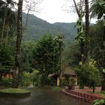 Blue Ginger Wayanad Resortsの写真