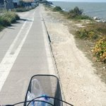 Biking on Ile de Re near St Martin