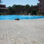 Φωτογραφία: Park Inn by Radisson Sharm El Sheikh Resort