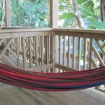 View of Patio with Hammock