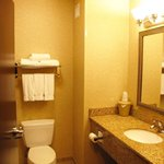 Billede af Holiday Inn Express Hotel & Suites Syracuse North - Airport Area