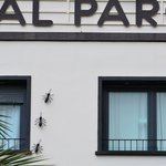Photo of Hostal Parque