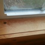 Black moldy stuff growing on windows, dirty/stained window sills.