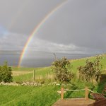 Rainbow from the Patio. nearly poetry!