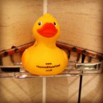 Cute little duck in the bathroom. A nice touch.
