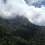 Moro Rock from the bottom...
