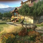 Foto de Bronze Antler Bed & Breakfast