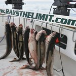 Ray's The Limit Charters