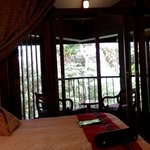 room with a view of forest!