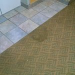this is stains in front of elevator what a dump