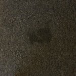 Mystery stain on carpet next to bed