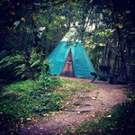 Photo de Comrie Croft Eco Hostel & Camping