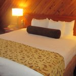 BEST WESTERN PLUS Tree House resmi