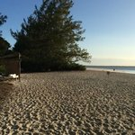 mnemba - the signposts are turtle nests