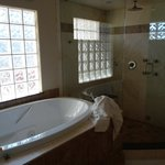 Jaquzzi Tub and Shower/sauna