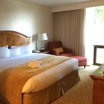 Washington Dulles Airport Marriott resmi