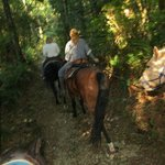 riding through the rain forest in Golden Ears