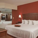 Photo de Hampton Inn Grand Rapids-North