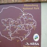 Pilanesberg National Park Foto