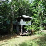 Foto van Ferntree Rainforest Lodge