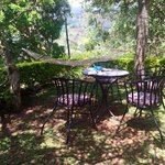 A great spot to drink tea, write in a journal or just soak up the tea plantations and mountain t