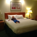 Billede af Fairfield Inn & Suites Fairfield Napa Valley Area