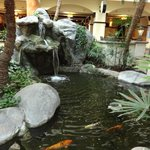Waterfall feature in Atrium
