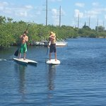 Paddle boards available too!