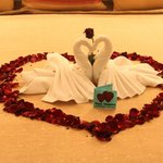Honeymoon Swans on Bed