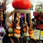 early October gourds, pumpkins