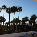 Bilde fra Crowne Plaza Phoenix - Chandler Golf Resort