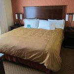 Foto van Homewood Suites Denver International Airport