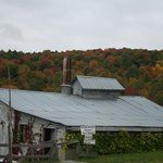 Fall splendor at Sugarbush Farms