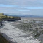 Fossil-rich coast at Kilve