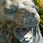 the welcome lions, Beverley House, DHawkins