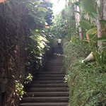 just one of the flights of stairs