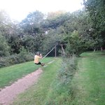 Fun on the zip wire
