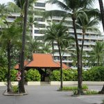 The hotel entrance surrounded by palms
