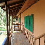 Foto de Suchipakari Amazon Rainforest Ecolodge