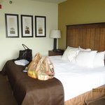 Foto de AmericInn Lodge & Suites Two Harbors