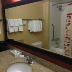 Courtyard by Marriott Alexandria Old Town/Southwest Foto