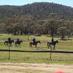 Thredbo Valley horse riding