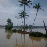 Foto de Fragrant Nature Hotels & Resorts - Kollam