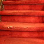 Smelly, dangerous, worn stair carpets