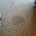 Stain noticeable after carpet dried.