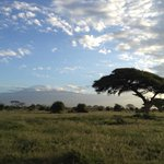 Photo de Amboseli National Park