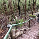 Stairs down to lower lookout (walking anti clockwise from start)