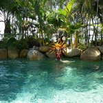 Photo de Melaleuca Resort Palm Cove
