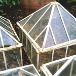 old cloches and rhubarb forcer